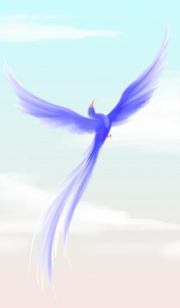 Кокология. Пройти тест Синяя птица