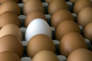 Упаковка яиц, белые и коричневые яйца
